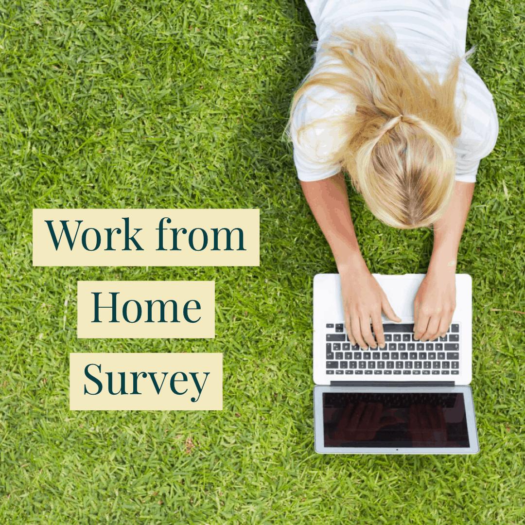 WFH Survey